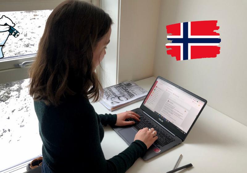 stagiaire RSE Travailassocie Norvege
